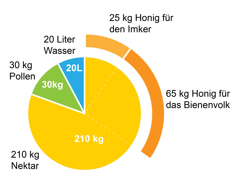 Honigleistung pro Bienenvolk